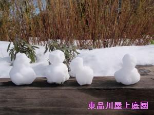 yuki7_20140209140622dc9.jpg