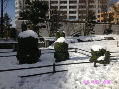 yuki_20140209140544621.jpg