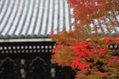 20131109_南禅寺-003