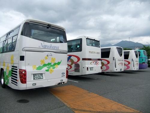 2013.6.15 さくらんぼ狩り(里の駅) 032 (3)