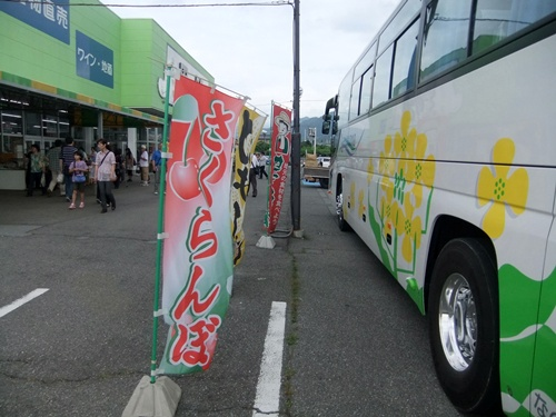 2013.6.15 さくらんぼ狩り(里の駅) 032 (4)