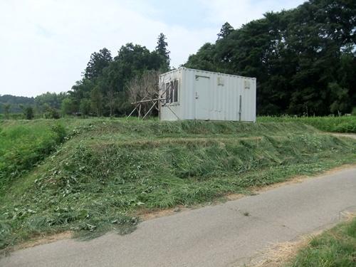 2013.7.13 畦草刈り(八反目) 006 (2)
