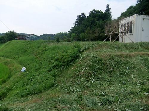 2013.7.13 畦草刈り(八反目) 006