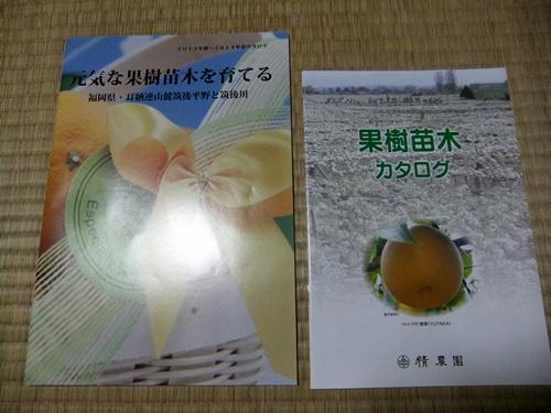 2013.9.27 秋の楽しみ(果樹苗) 048 (1)