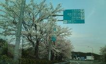 kakuさんのブログ-20100419121511.jpg