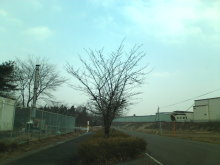 kakuさんのブログ-20110206123458.jpg