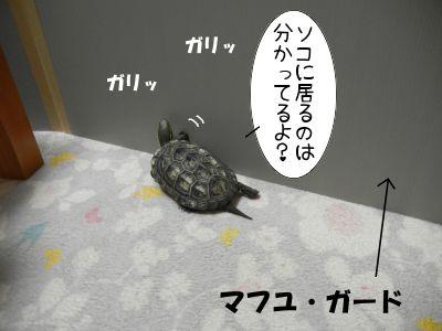 20130914-04.jpg