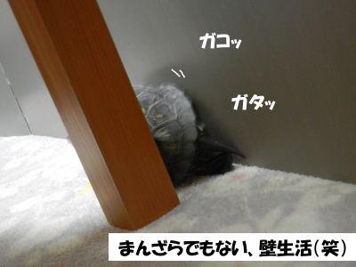 20131119-02.jpg