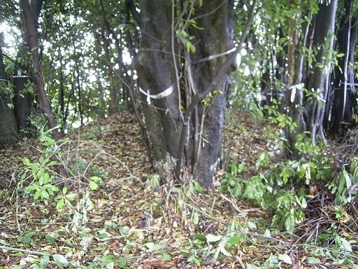 吉備姫王墓墳丘