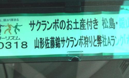 01サクランボツアー
