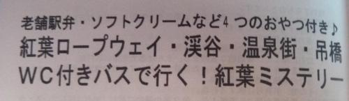 02ミステリーツアー (2)