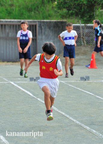 rikujou2014-1.jpg