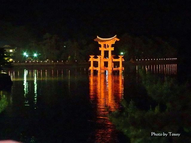 厳島神社赤鳥居ライトアップ