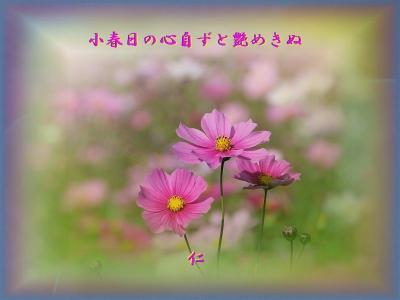 フォト575『 小春日の心自ずと艶めきぬ 』