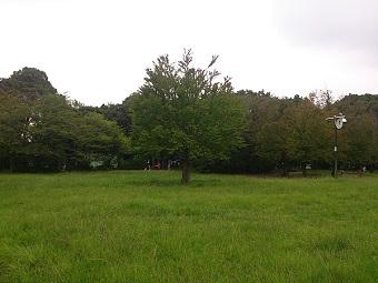 川崎市の公園