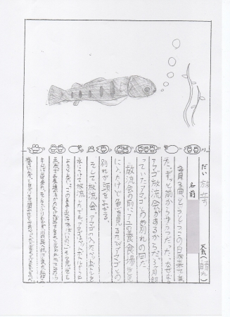 アマゴの里親募集 天竜川漁協