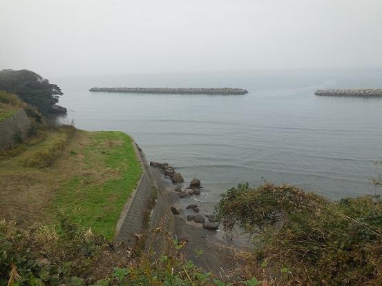 DSCN0269suzuya7.jpg