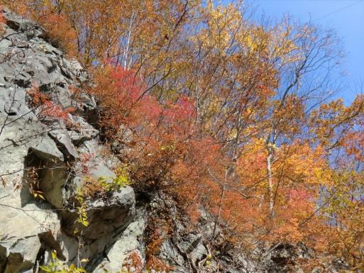 岩峰の紅葉