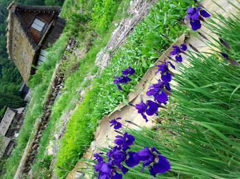 6月は聖地巡礼 雛見沢村へ ひぐらしのなく頃に④