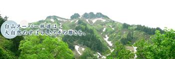 岐阜県と石川県を結ぶ 33.3キロ 雲上の林道
