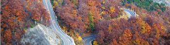 紅葉シーズンも最高 白山スーパー林道