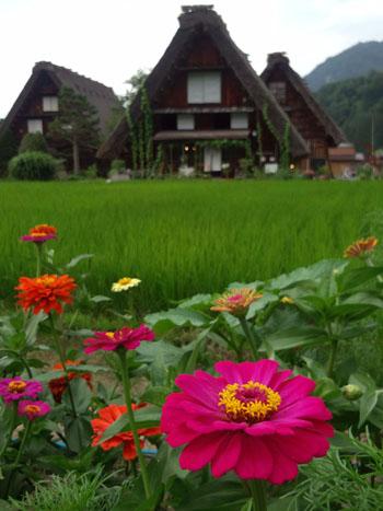今年の夏休み/お盆休みは、白川郷で過ごしませんか? ②