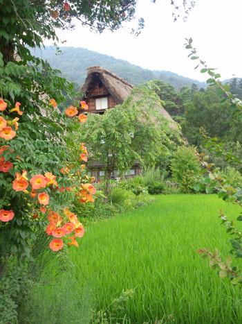 今年の夏休み/お盆休みは、白川郷で過ごしませんか? ④