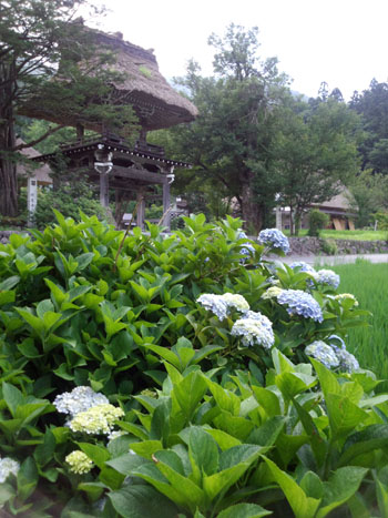 今年の夏休み/お盆休みは、白川郷で過ごしませんか? ⑥