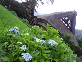 今年の夏休み/お盆休みは、白川郷で過ごしませんか? ⑦