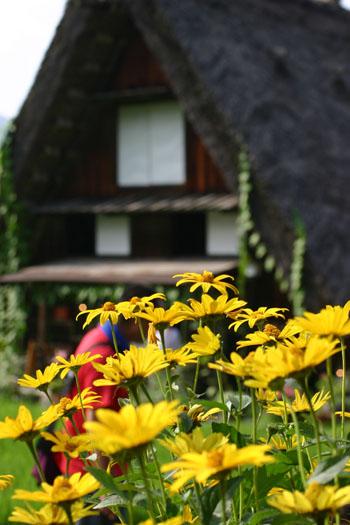 【お盆】夏の世界遺産 白川郷を楽しむ★自然!観光!温泉!魅力満点♪ ⑧