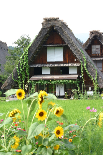 夏休み~世界遺産白川郷を散策 大自然&昔ながらの風景 ⑤