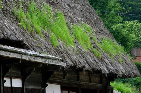 …白川郷の観光スポット巡りに…国重文 旧遠山家民俗館 ④