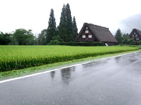 大自然に囲まれた白川郷~雨にも強い ②