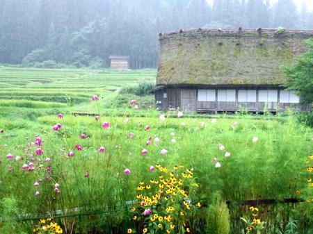 大自然に囲まれた白川郷~雨にも強い ③
