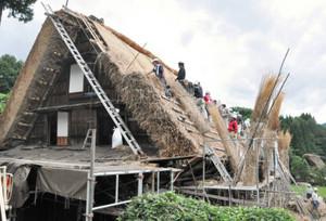 合掌造り屋根、結のふき替え 白川村荻町で始まる