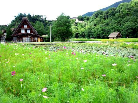 ◆ちょっと遅めの夏休み◇夏の疲れを温泉で癒す~世界遺産 白川郷 ③