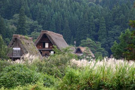 白川郷~稲刈り~始まる 稲架掛け風景 秋のおでかけに~ ⑤