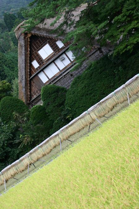 ☆ ~自然豊かな白川郷の地を秋の彩りを求め散策し 当館自慢の温泉をご堪能していただき 湯ったりとお過ごしください~ ★ ⑦
