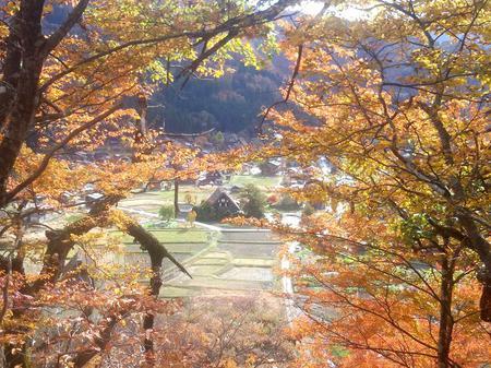 秋の世界遺産白川郷を満喫 ①