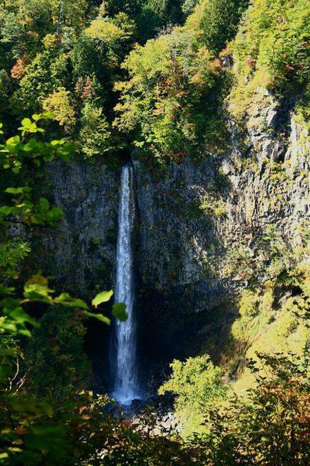 白山国立公園 大白川渓谷 白水の滝を満喫