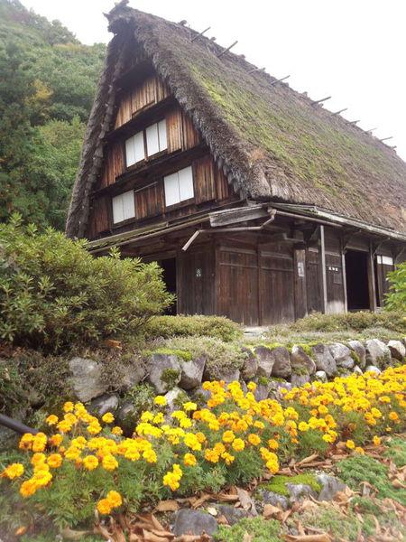 白川郷の代表的な合掌造りである 国指定重要文化財 旧遠山家民俗館 (Tooyama house) ②