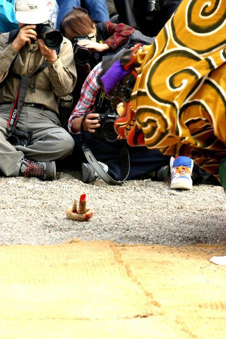 天下の奇祭 白川郷「どぶろく祭」 白川八幡宮 10月14日~15日 荻町合掌造り集落~獅子舞~どぶろく振舞 ③