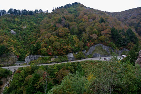 白山スーパー林道 石川県側 栂の木台駐車場 標高1,400m ②