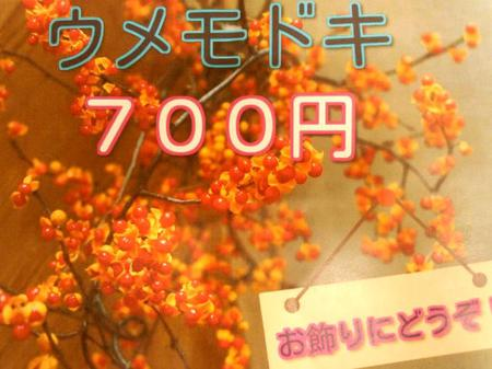 道の駅 飛騨白山 秋季の収穫~色々~販売中 ②