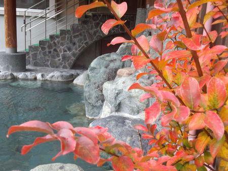 世界遺産 白川郷合掌集落をタップリ観光&源泉掛け流し 大白川温泉 しらみずの湯を堪能! ⑩