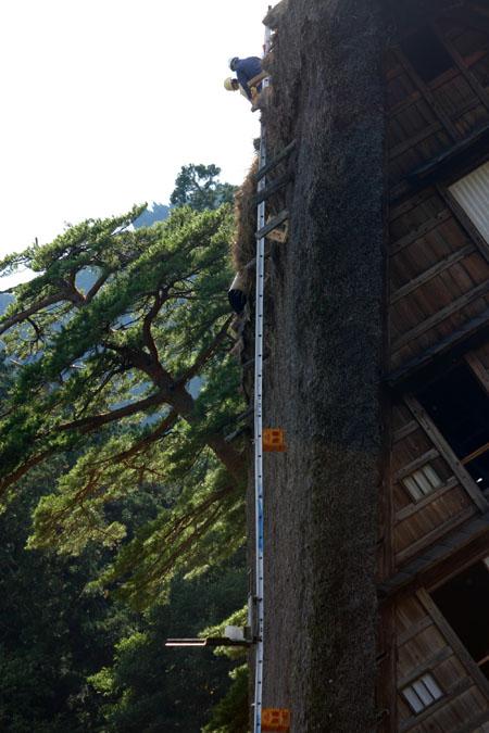世界遺産 白川郷 ~ 明善寺郷土館 (Myozenji museum) ~茅葺き屋根修復作業 風景 ⑤