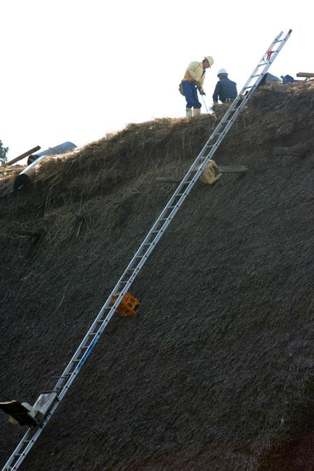世界遺産 白川郷 ~ 明善寺郷土館 (Myozenji museum) ~茅葺き屋根修復作業 風景 ⑪