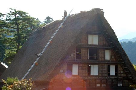 世界遺産 白川郷 ~ 明善寺郷土館 (Myozenji museum) ~茅葺き屋根修復作業 風景 ⑬
