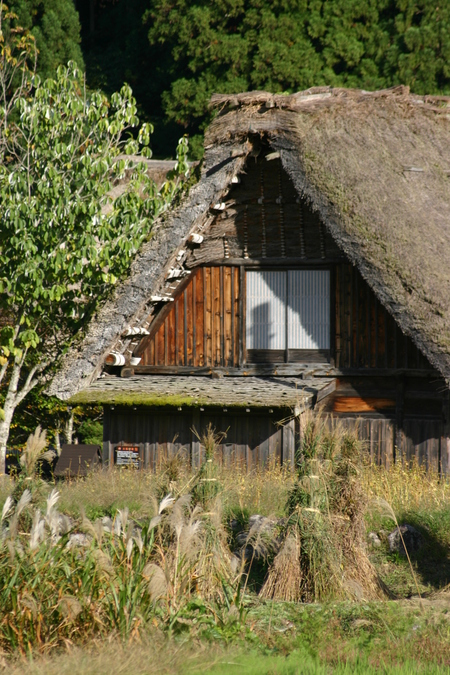 白川郷の冬は早くやってくる~祭が済むと村人たちは、あわただしく冬の準備に取り掛かる~⑤