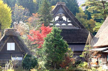 紅葉を眺めながら~ゆったりと散策を楽しもう~世界遺産 白川郷合掌集落 ⑦